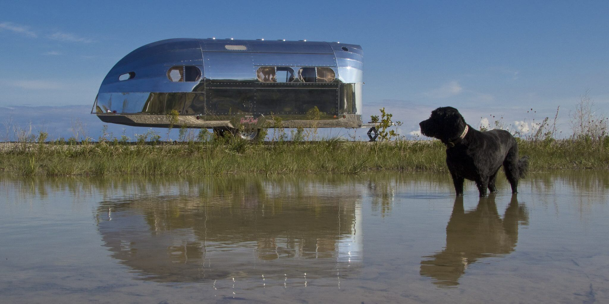 4 Adventures for You, Your Dog & Your Road Chief