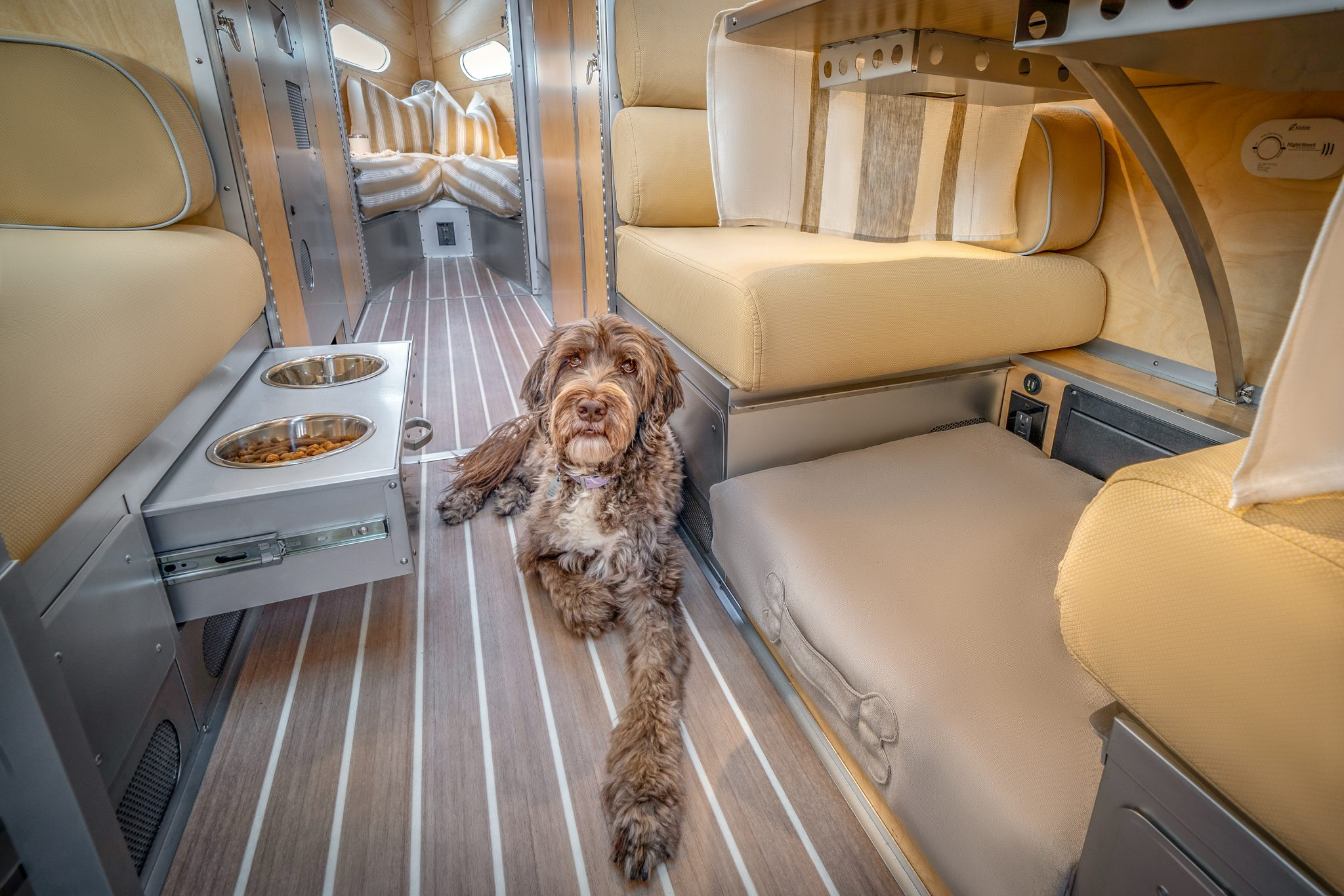 RVing With Dogs is More Fun in a Bowlus